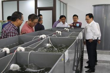 路伟深入市水产总站调研并检查节日安全生产工作