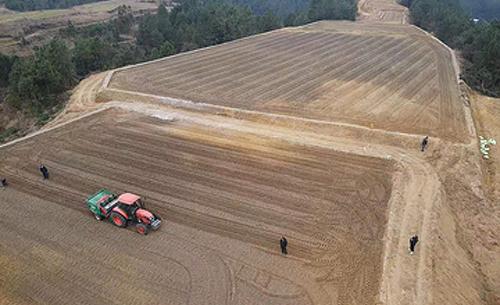 开州区:区农业农村委副主任检查指导农田宜机化改造及春耕生产