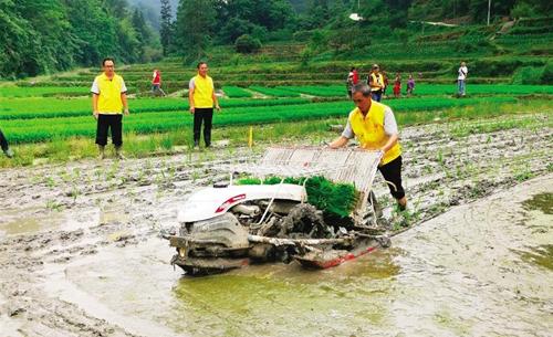 黔江区:2021年水稻大钵体毯状苗机插现场会举行