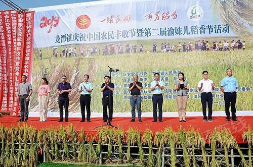 重庆涪陵:2019中国农民丰收节暨第二届渝妹儿稻香节在龙潭镇启幕