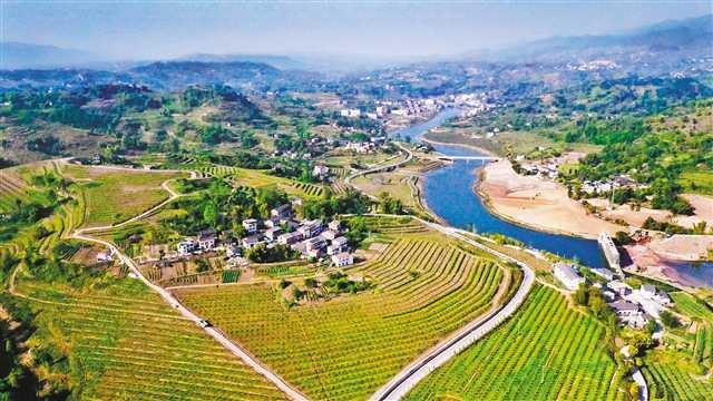 """渝北区大力实施""""双十万工程"""" 发展现代山地特色高效农业"""